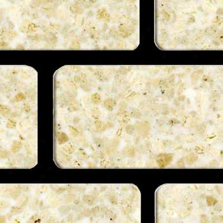Fritztile Brick 1/4 Wt6200 Royal Cream Marble Tile & Stone