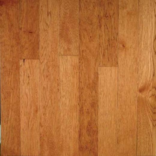 Harris-tarkett Capital Plank 3 1/4 Glazed Caramel Hardwood Flooring