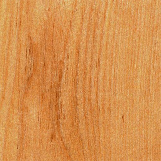 Hawa  Solid Birch Natural Birch Hardwood Flooring