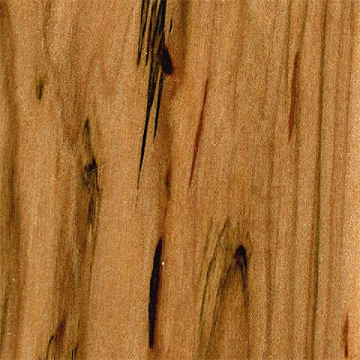 Hawa  Solid Maple Strip Maple Natural Economy Hardwood Flooring