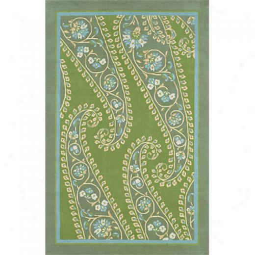 Hellenic Rug Imports, Inc. Inspirations 5 X 8 Paisley Area Rugs