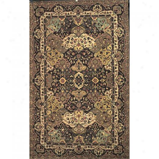 Hellenic Rug Imports, Inc. Wonders Of The Universe 4 X 6 Nooro Mocha Area Rugs