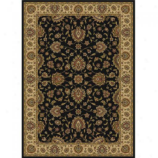 Home Dynamix Royal Treasures 7X  10 Blacm 2412 Area Rugs