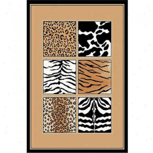 Home Dynamix Zone 4 X 5 9885 Area Rugs