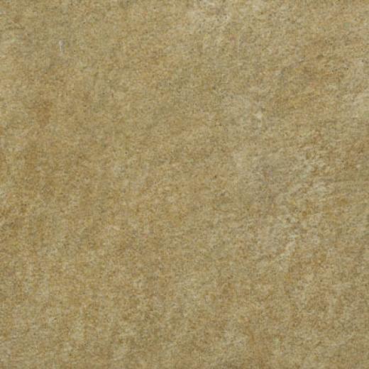 Ilva Landscape 10 X 10 Meadow Tile & Stone