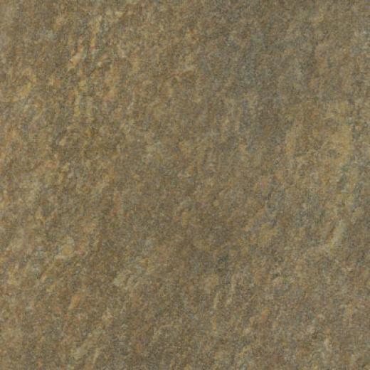 Ilva Landscape 7 X 7 Forest Tile & Stone