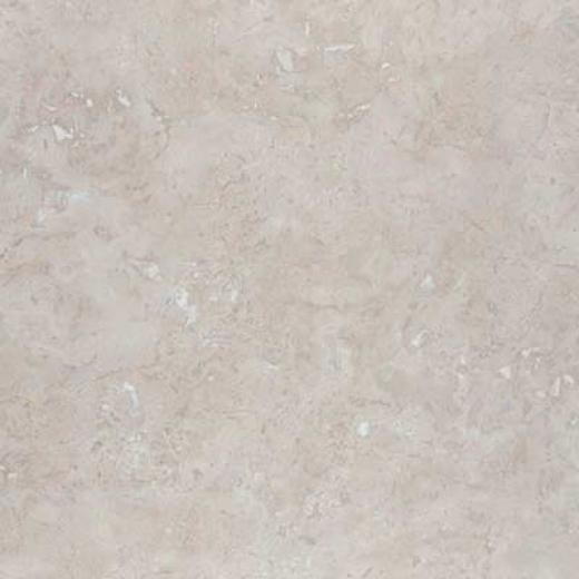 Incepa Pompei 13 X 13 Snow Tile & Stone