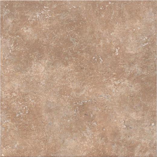 Incepa Venezia 6 1/2 X 6 1/2 Nocce Tile & Stone