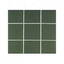 Interceramic Confident Tones 4 X 4 Evergreen 579 Imtboto100444