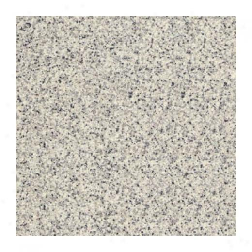 Interceramic Intertedh Unglazed 12 X 12 Matte Grp 2 Uni Super White Tile & Stone