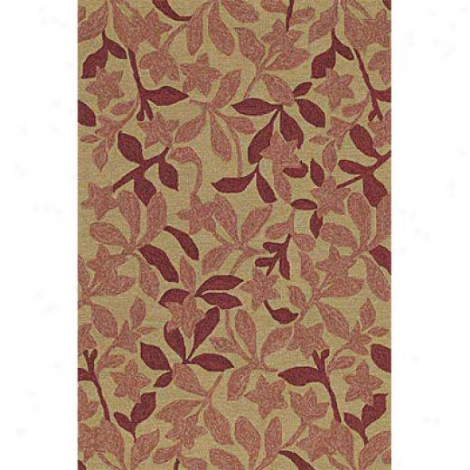 Kaleen Home & Porxh 2 X 3 Star Fish Cinnamon Area Rugs