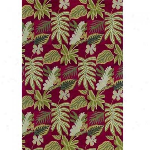 Kaleen Moods 5 X 8 Barsil Red Area Rugs