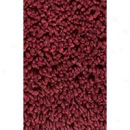 Kaleen Shag Tika 5 X 8 Red Region Rugs