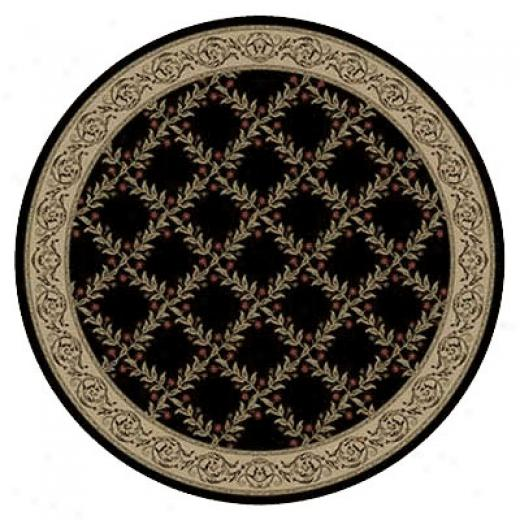 Kane Carpet Elegance 8 Round Impossible to believe Midnight Magic Area Rugs