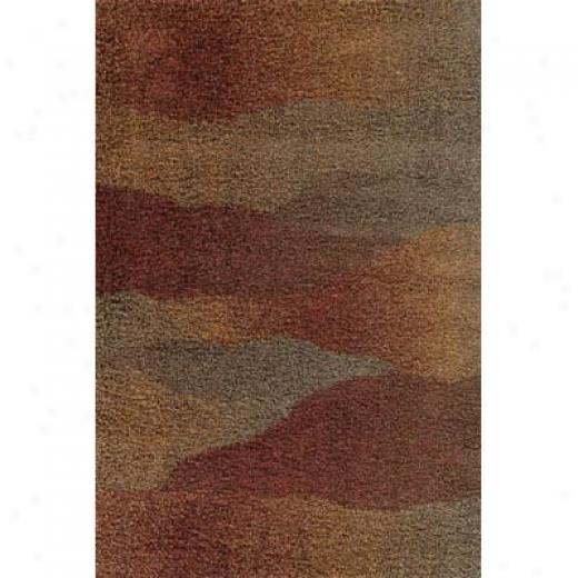 Kane Carpet Visions Shag 8 X 10 Waves Rusty Area Rugz