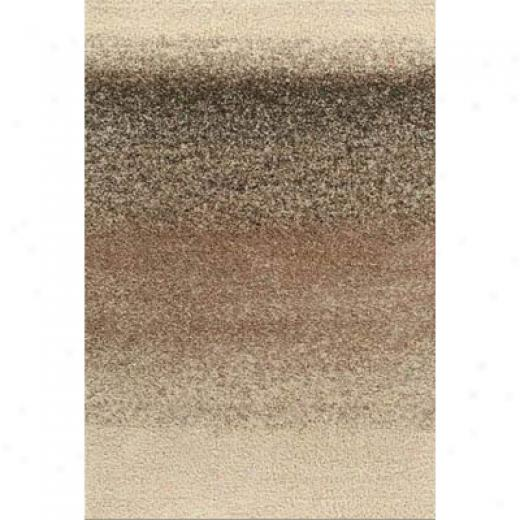 Kane Carpet Visions Shag 4 X 6 Ombre Salt And Pepper Area Rugs