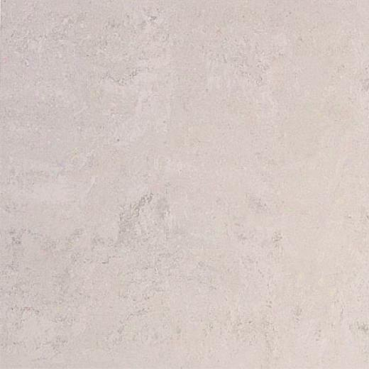 Laufen Basilica 12 X 12 Unpolished Etruscan Light Grey Tile & Stone