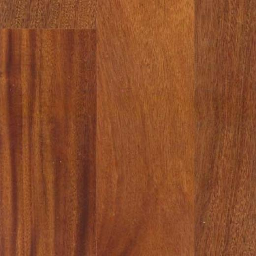 Lauzon Nextstep - International Santos Mahogany Natural Ma03m125