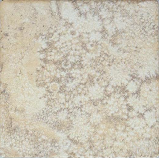 Leonardo Ceramica Fiorito 6 X 6 Dorato Tile & Stone