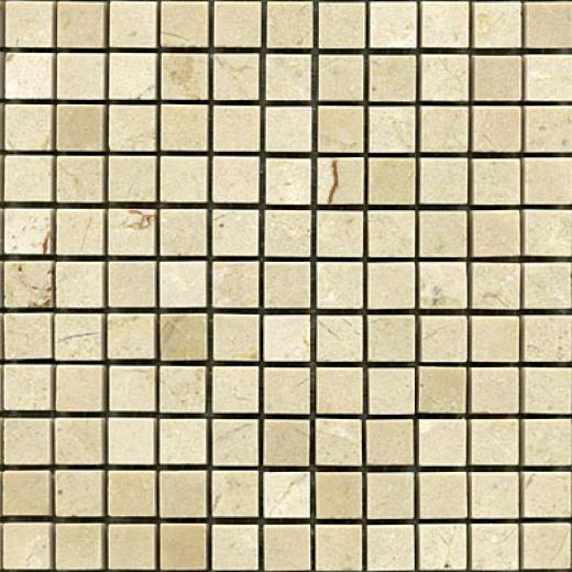 Maestro Mosaics Marble 5/8 X 5/8 Mosaic Polished Crema Light Tile & Stonr