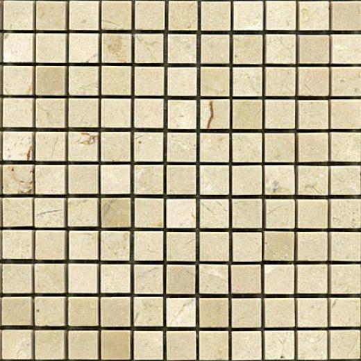 Maestro Mosaics Marble 5/8 X 5/8 Mosaic Polished Crema Light Tile & Stonr