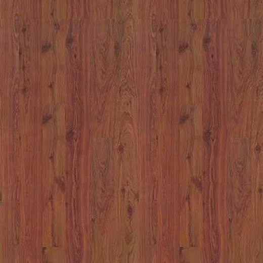 Mannington Coordinations Accumulation Cordovan Aus5ralian Cypress Laminate Flooring