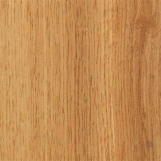 Mannington Revolutions Plank Ontairo Oak Natural Laminate Flooring