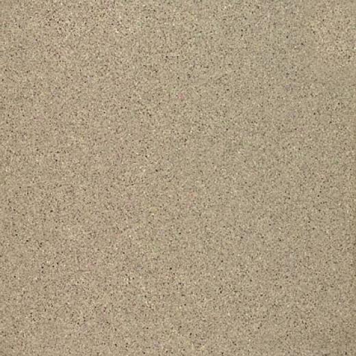 Marazzi Graniti Polished 16 X 16 Malaga (pewterr) Tile & Stone