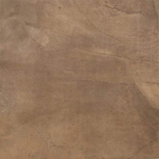 Megatrade Corp. Alviano Floor Tile 12 X 13 Noce Dark Beige Tile & Free from ~s