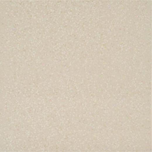 Megatrade Corp.-Poshe Matte 16 X 16 Ivory Natural Matte Tile & Stone