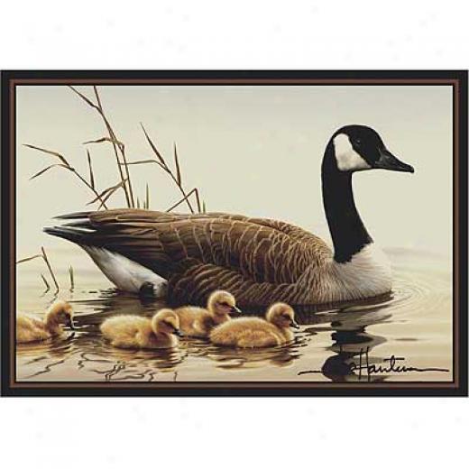 Milliken Hautman Accumulation 4 X 5 Canada Goose Area Rugs