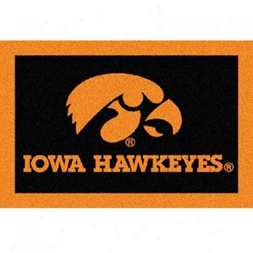 Milliken University Of Iowa 3 X 4 University Iowa Area Rugs