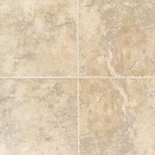 Mohawk Buccaro 6 X 6 Noce Tile & Stone
