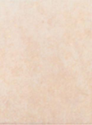 Mohawk Laredo Ii 8 X 10 Sand Tile & Stone