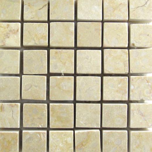 Mohawk Marblestone Mosaics Polished Sunny Tile & Grave~