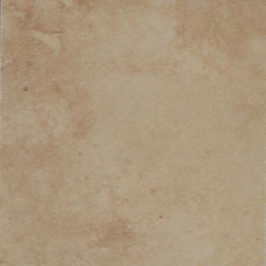 Mohhawk Mirador 13 X 13 Brown Pearl Tile & Stone