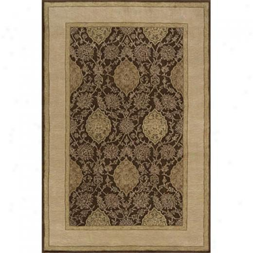 Momeni, Inc. Consonance 4 X 6 Brown Arae Rugs