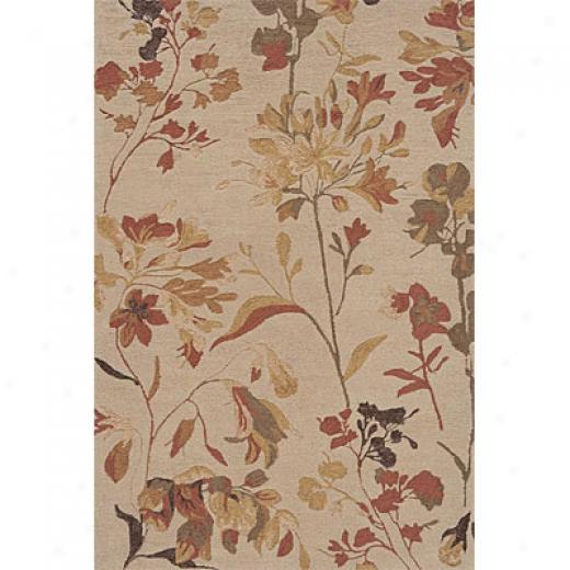 Momeni, Inc. Transitions 2 X 3 Sand Ts-05 Area Rugs