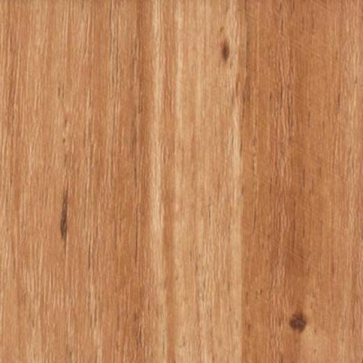 Nafco Dorchesteer Plank Hemlock Vinyl Flooring