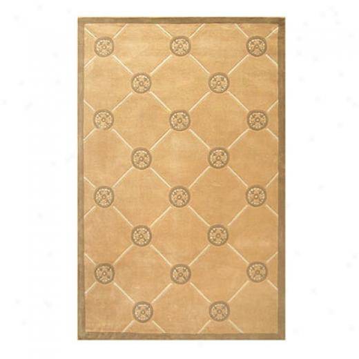 Nejad Rugs Compass 8 X 11 Sand Area Rugs