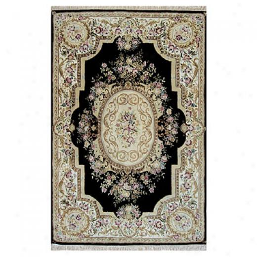 Nejad Rugs French Eiegance 3 X 6 Aubuson Black/ivory Area Rugs