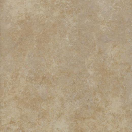 New World Texas 13 X 13 Beige Tile & Stone