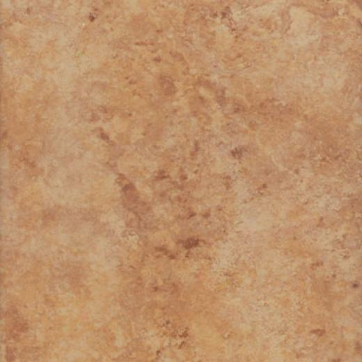 New World X Series 18 X 18 Brown Tile & Stone