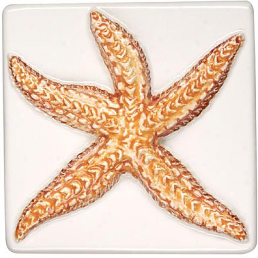 Original Style Seashells Camellia 4 X 4 Sea Star Tile & Stone