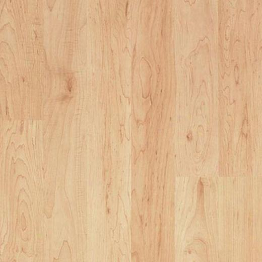 Pergo Accolade With Underlayment Hampton Maple Laminwte Flooring