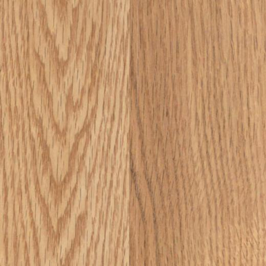 Pergo Elegant Expressions With Attached Underlayment Lenox Oak Laminate Flooring