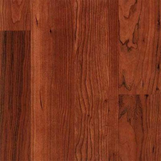Pergo Everyday Dark Cherry Ii Laminate Flooring