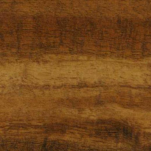 Pergo World Traveler 3.5 Koa Laminate Flooring