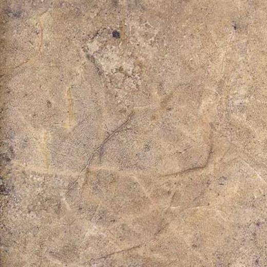 Portobello Atlantifa 20 X 20 Noche Tile & Stone