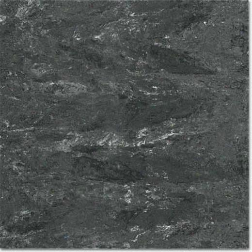 Portobello Galleria 12 X 12 Polished Caruzzo Nero Tile & Stone